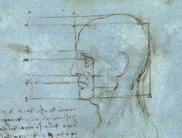 Leonardo Da Vinci – Proportions of the head